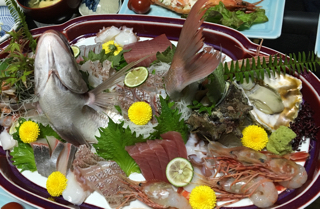 天然の鯛を